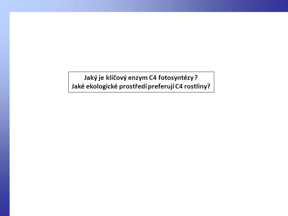 Jaký je klíčový enzym C4 fotosyntézy