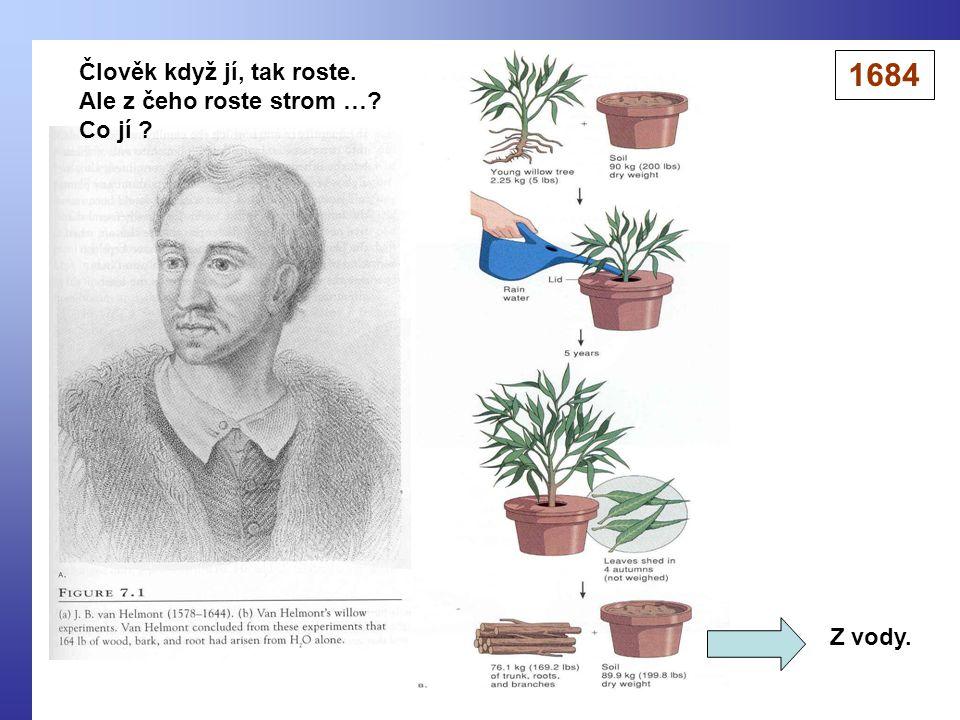 1684 Člověk když jí, tak roste. Ale z čeho roste strom … Co jí
