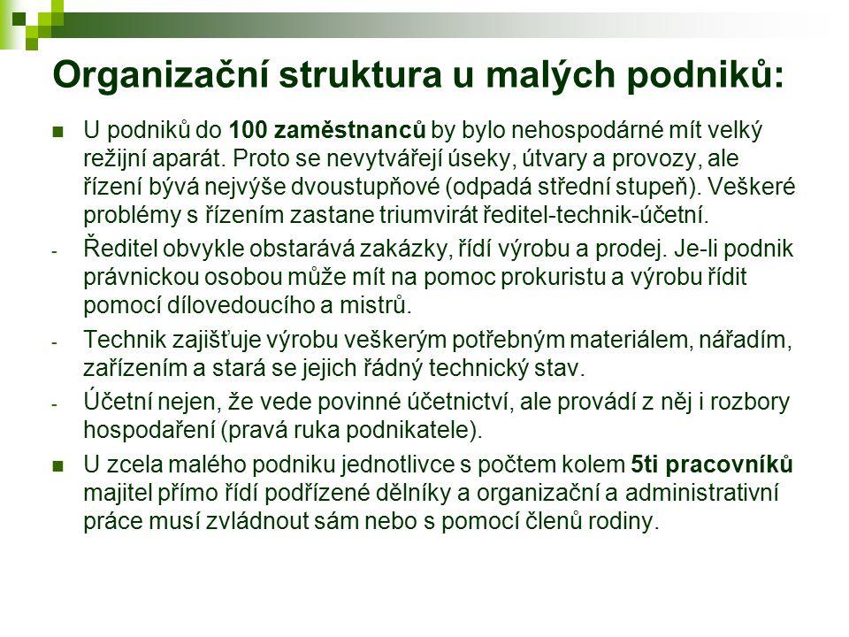 Organizační struktura u malých podniků:
