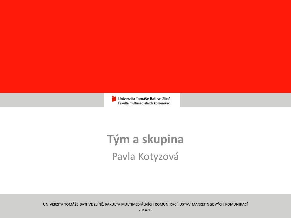 Tým a skupina Pavla Kotyzová