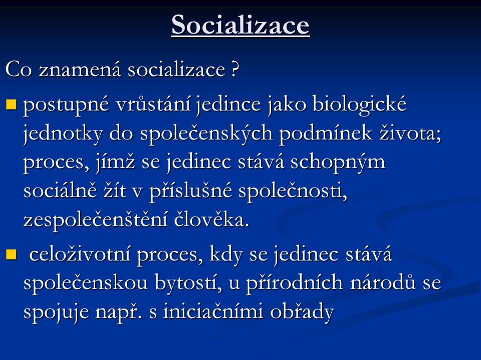 Socializace Co znamená socializace