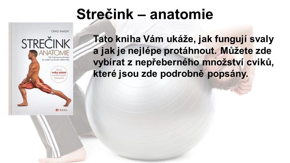 Strečink – anatomie