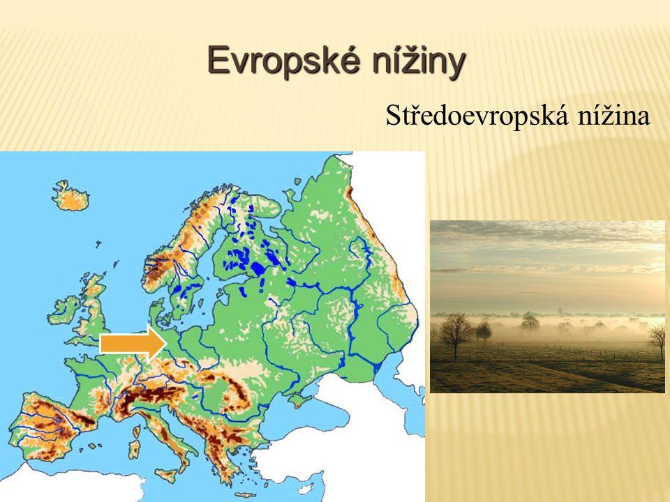 Evropské nížiny Středoevropská nížina