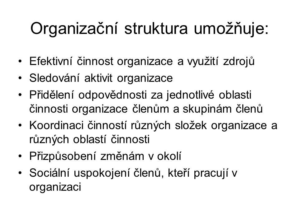 Organizační struktura umožňuje: