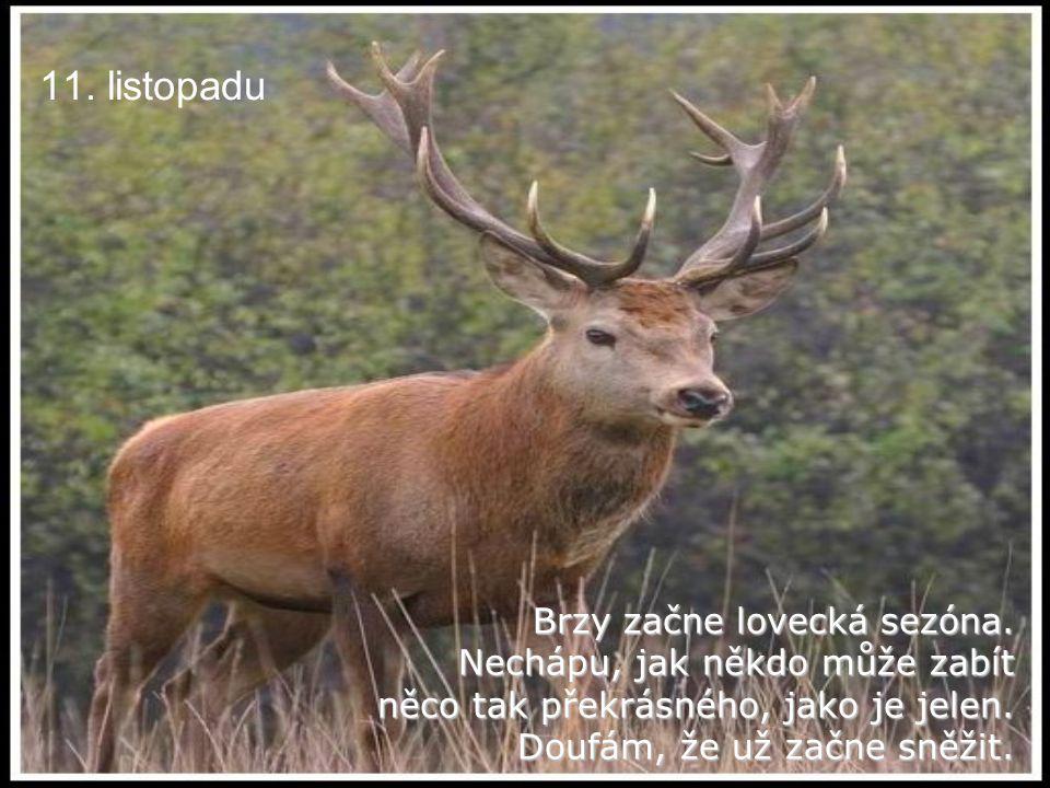 11. listopadu Brzy začne lovecká sezóna. Nechápu, jak někdo může zabít