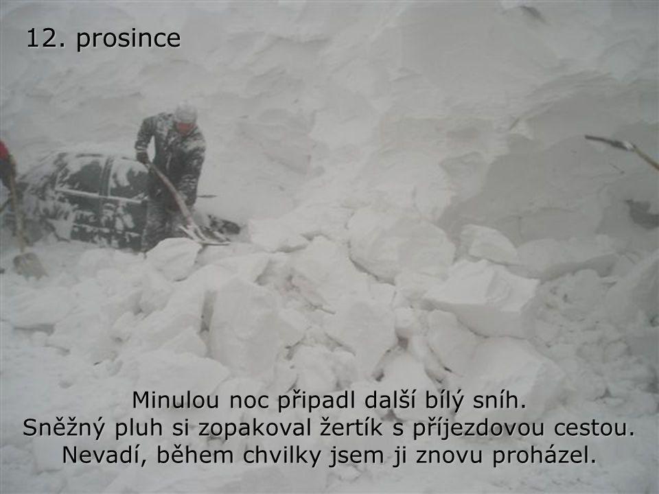 12. prosince Minulou noc připadl další bílý sníh.