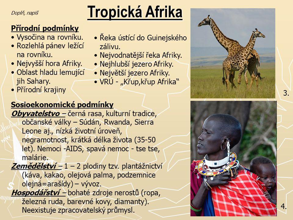 Tropická Afrika Přírodní podmínky Vysočina na rovníku.