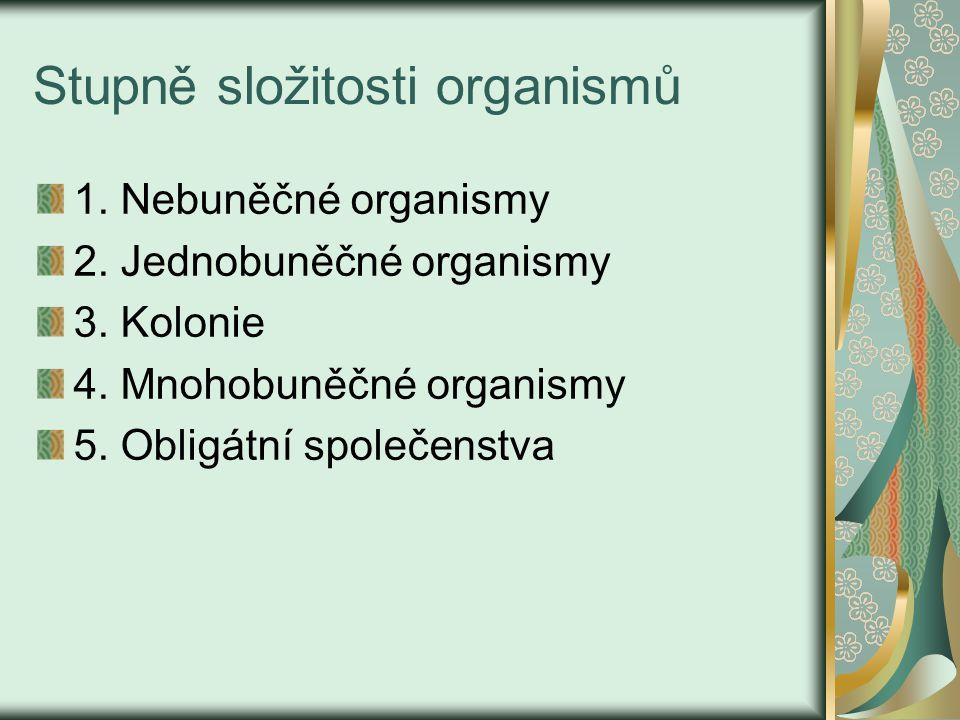 Stupně složitosti organismů