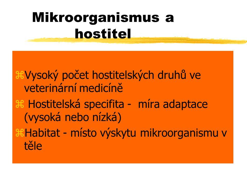 Mikroorganismus a hostitel