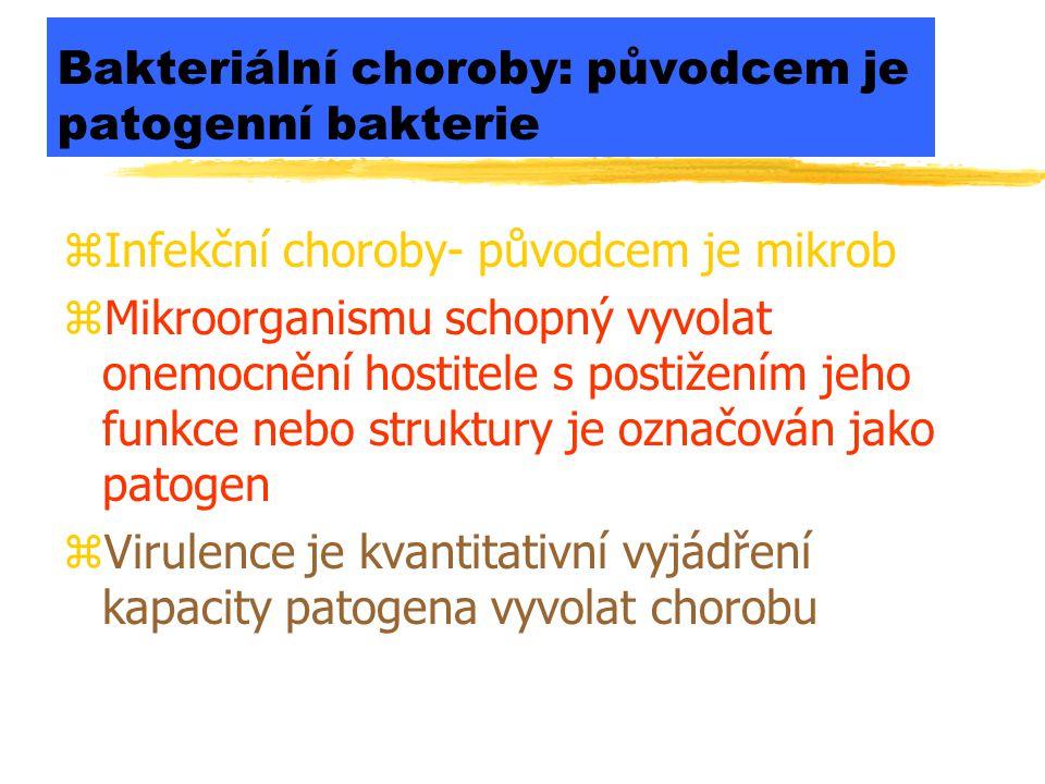 Bakteriální choroby: původcem je patogenní bakterie