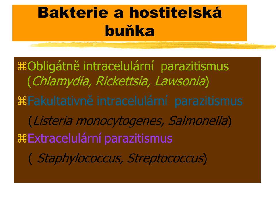 Bakterie a hostitelská buňka