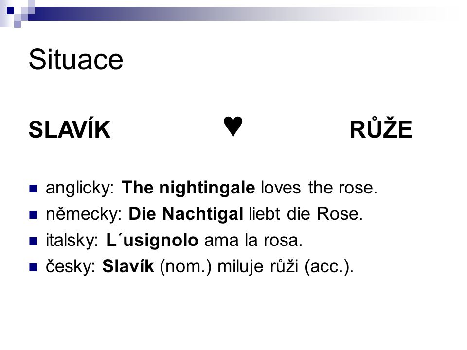 Situace SLAVÍK ♥ RŮŽE anglicky: The nightingale loves the rose.