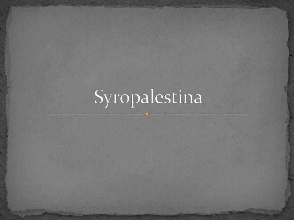Syropalestina