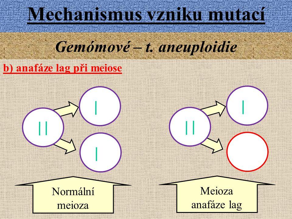 Gemómové – t. aneuploidie