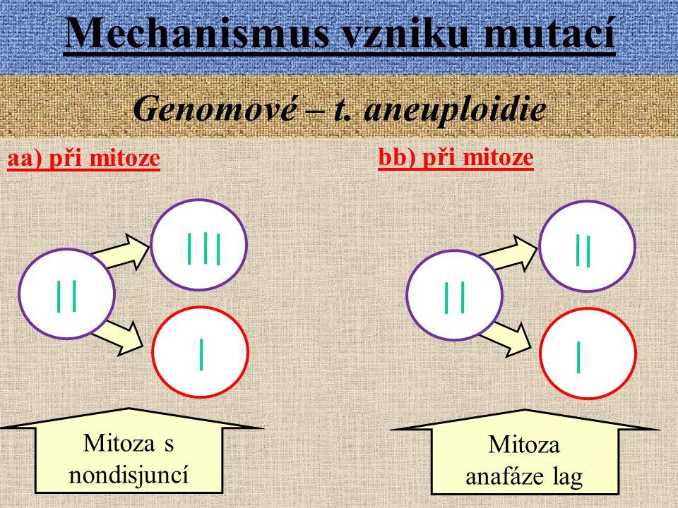Genomové – t. aneuploidie