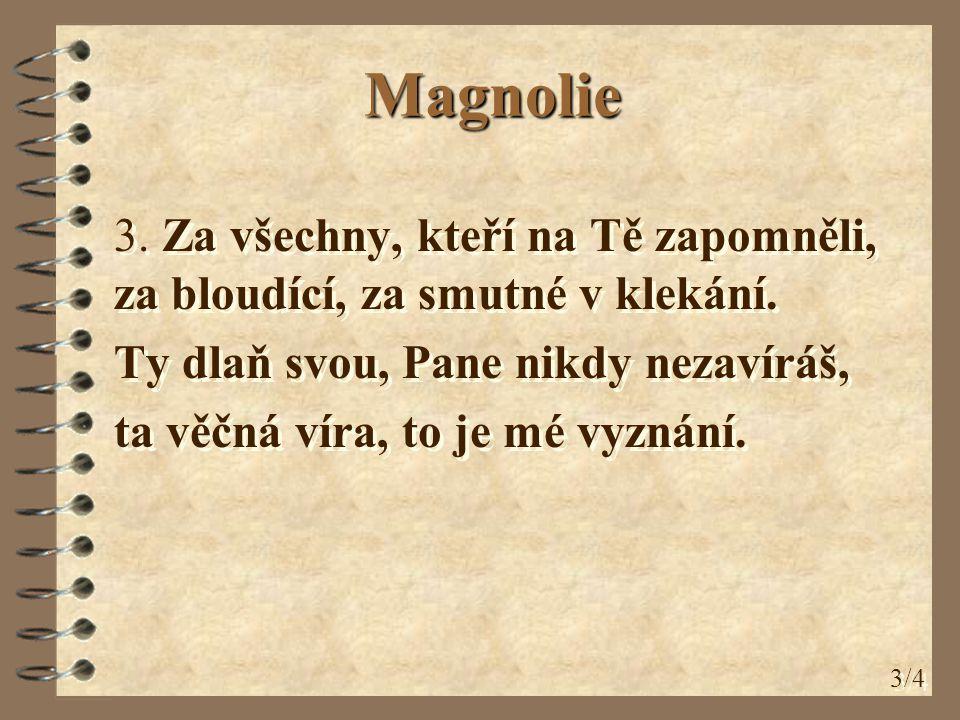Magnolie 3. Za všechny, kteří na Tě zapomněli, za bloudící, za smutné v klekání. Ty dlaň svou, Pane nikdy nezavíráš,