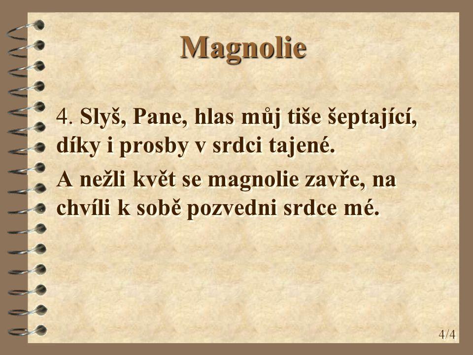Magnolie 4. Slyš, Pane, hlas můj tiše šeptající, díky i prosby v srdci tajené. A nežli květ se magnolie zavře, na chvíli k sobě pozvedni srdce mé.