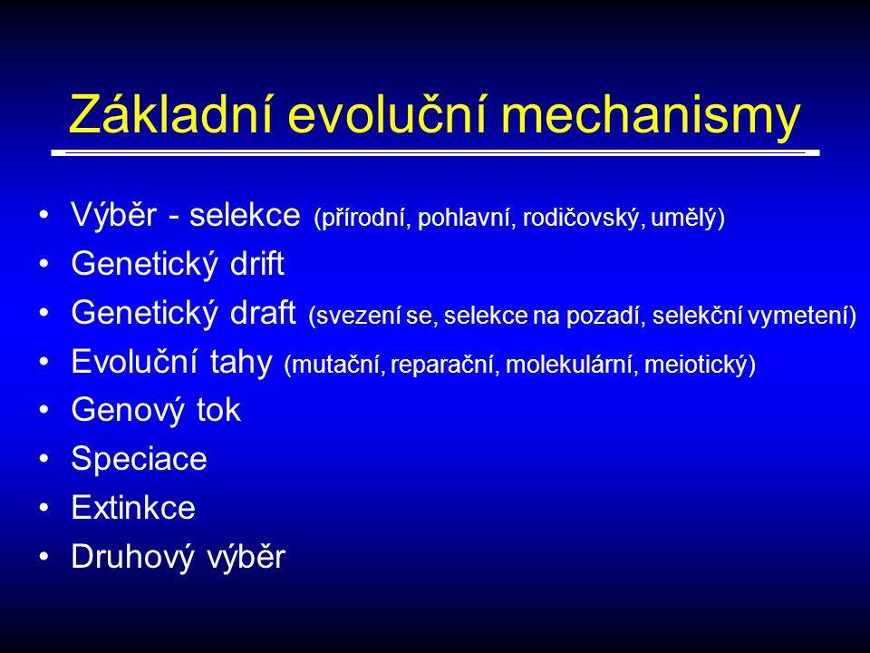 Základní evoluční mechanismy