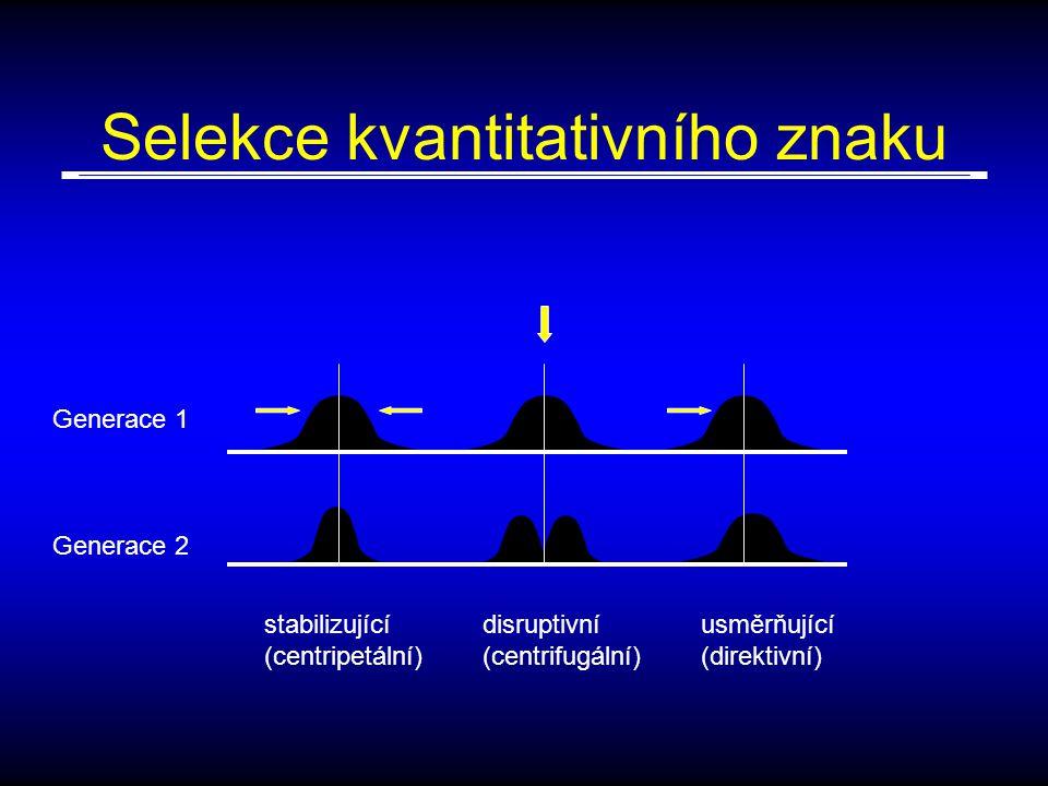 Selekce kvantitativního znaku