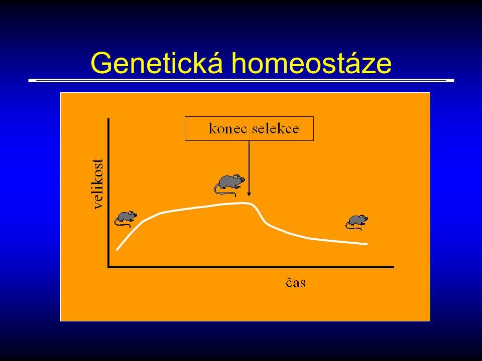 Genetická homeostáze