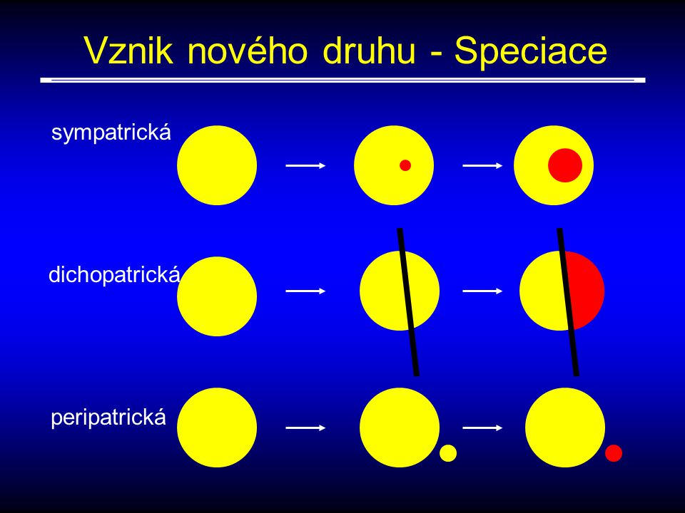 Vznik nového druhu - Speciace