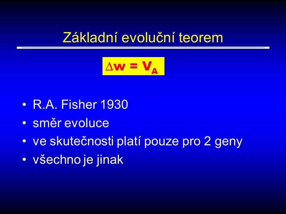 Základní evoluční teorem
