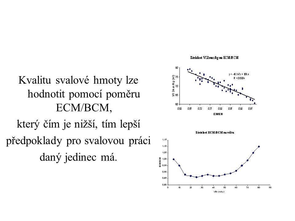 Kvalitu svalové hmoty lze hodnotit pomocí poměru ECM/BCM,