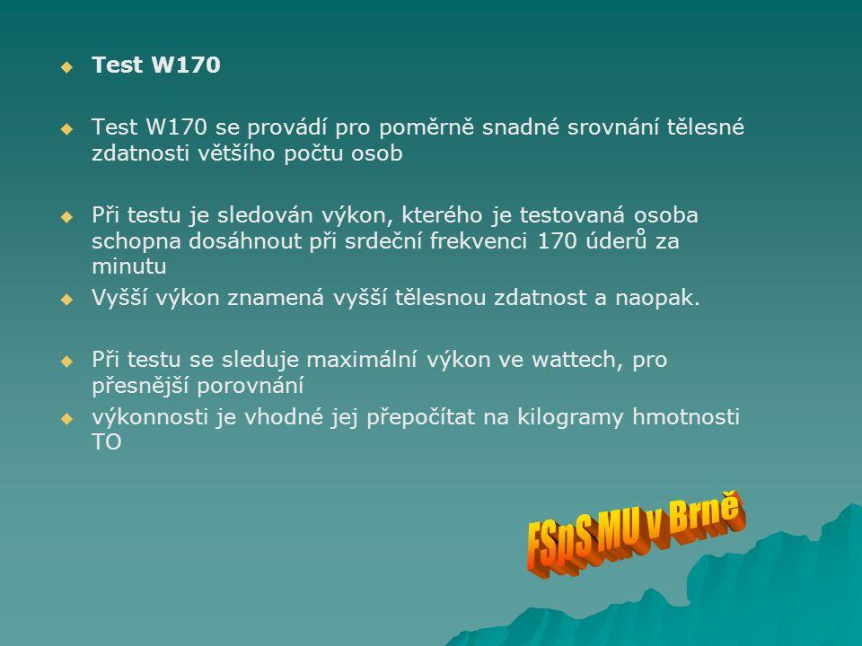 Test W170 Test W170 se provádí pro poměrně snadné srovnání tělesné zdatnosti většího počtu osob.