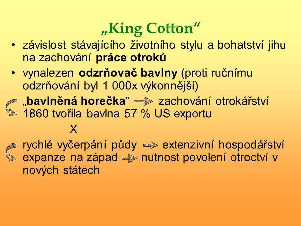 """""""King Cotton závislost stávajícího životního stylu a bohatství jihu na zachování práce otroků."""
