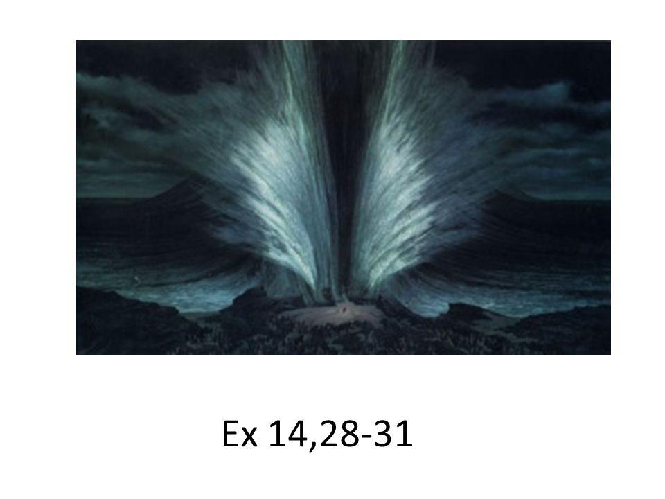Ex 14,28-31