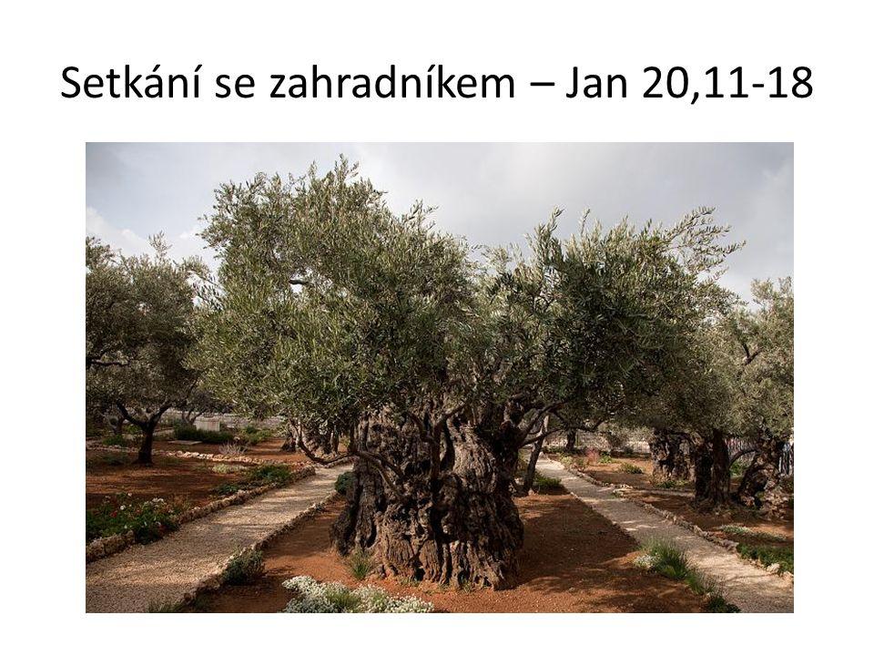 Setkání se zahradníkem – Jan 20,11-18