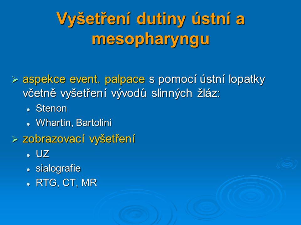 Vyšetření dutiny ústní a mesopharyngu