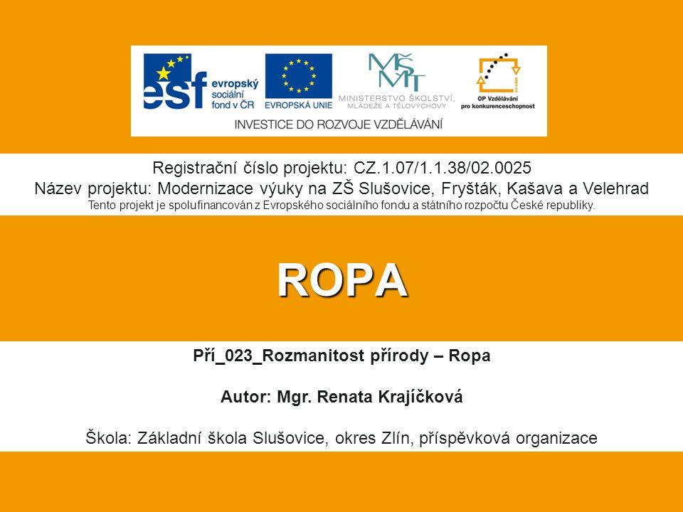 Pří_023_Rozmanitost přírody – Ropa Autor: Mgr. Renata Krajíčková