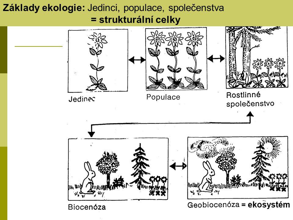Základy ekologie: Jedinci, populace, společenstva = strukturální celky