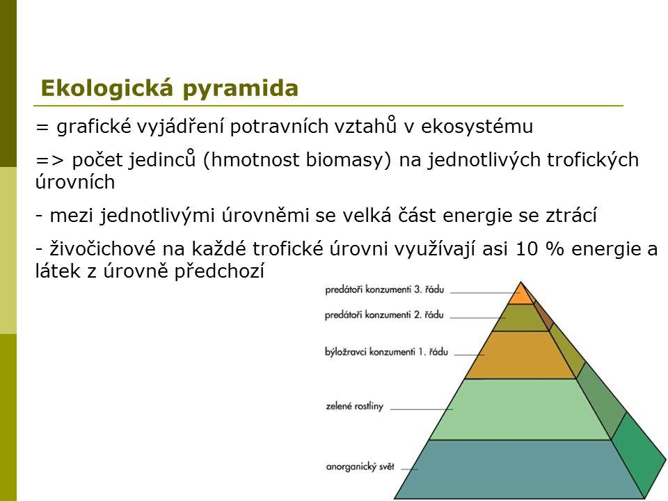 Ekologická pyramida = grafické vyjádření potravních vztahů v ekosystému. => počet jedinců (hmotnost biomasy) na jednotlivých trofických úrovních.