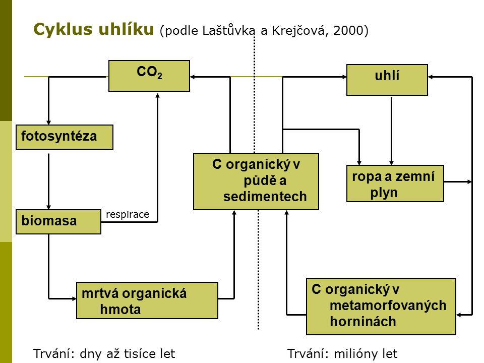 C organický v půdě a sedimentech