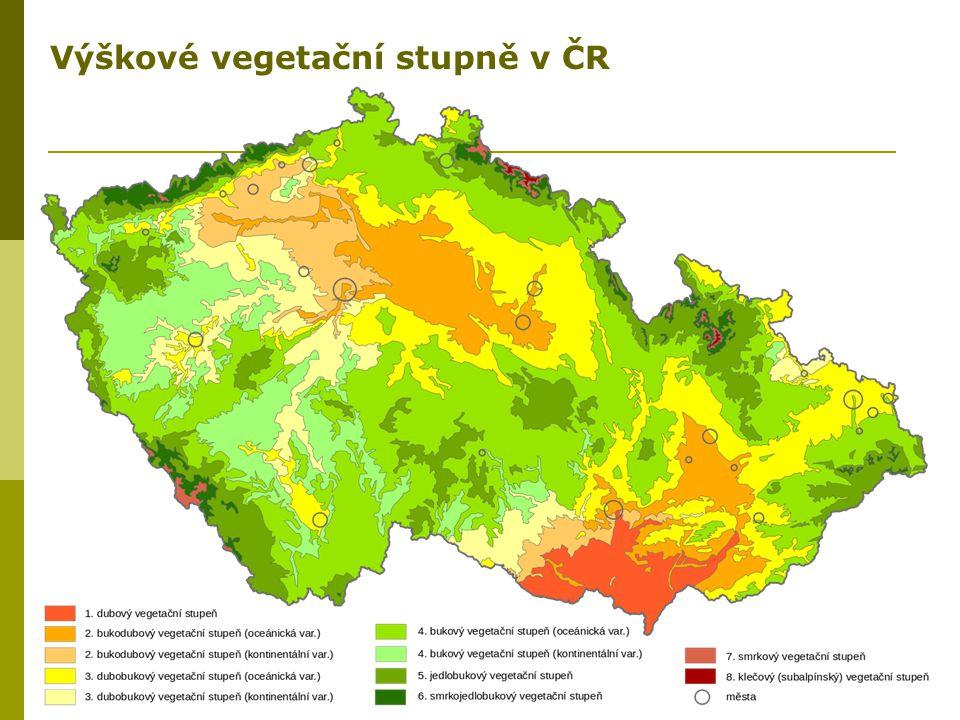 Výškové vegetační stupně v ČR