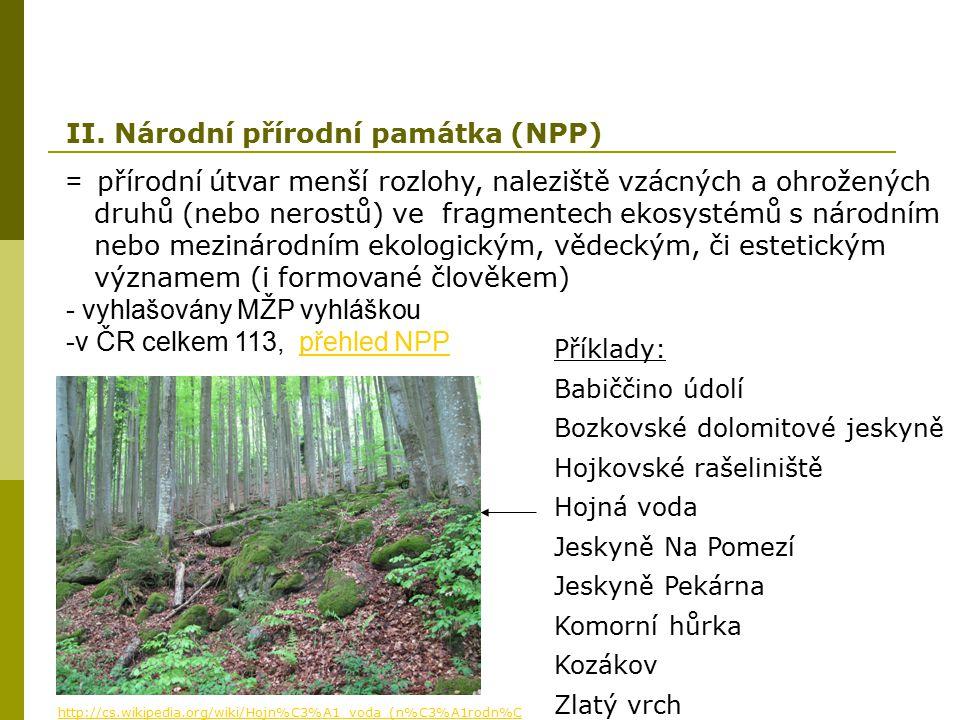 II. Národní přírodní památka (NPP)