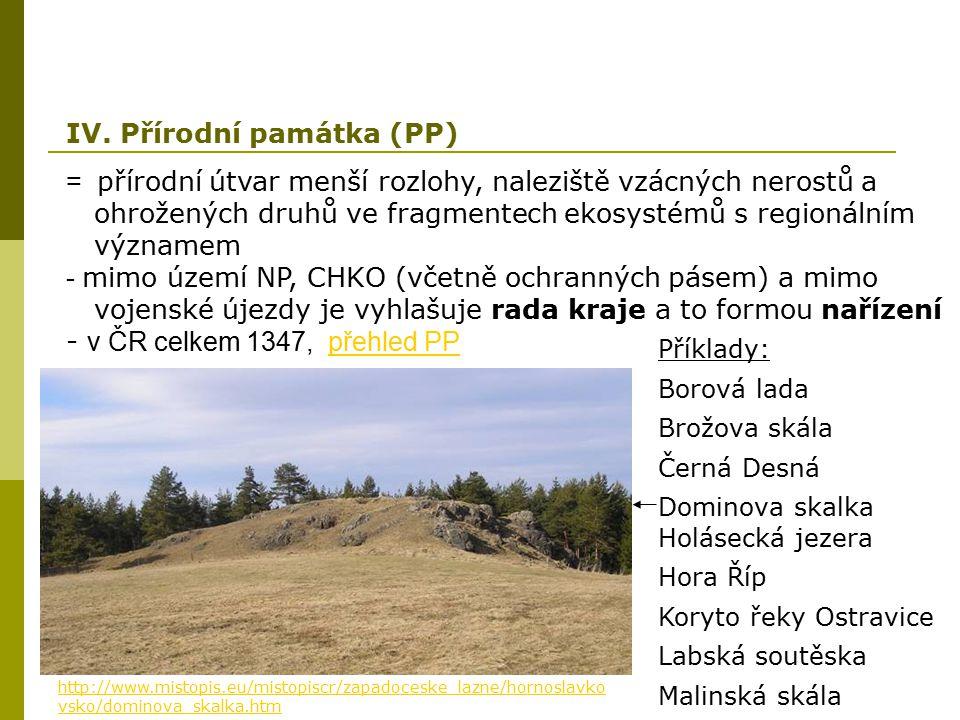 IV. Přírodní památka (PP)