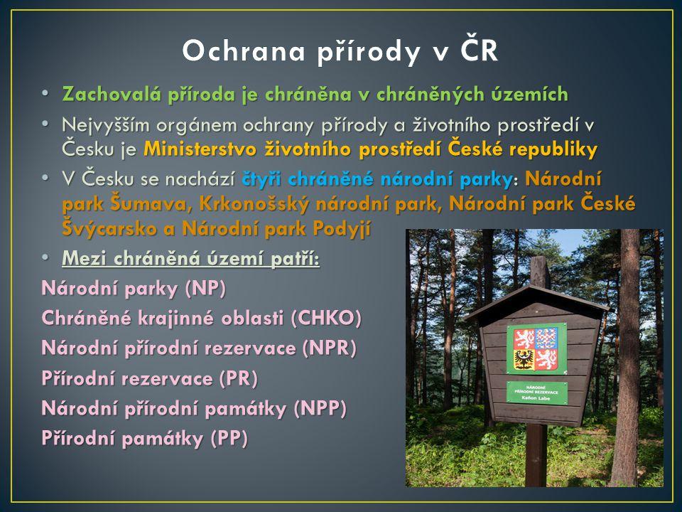 Ochrana přírody v ČR Zachovalá příroda je chráněna v chráněných územích.