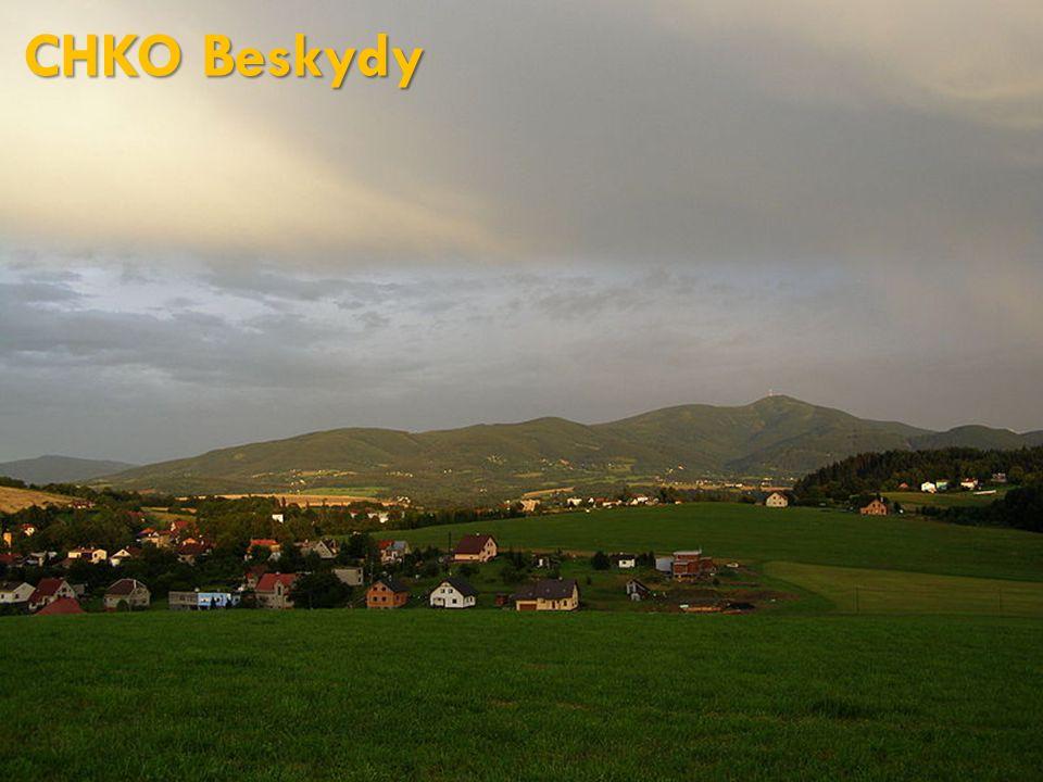 CHKO Beskydy http://cs.wikipedia.org/wiki/Soubor:Lysohorsk%C3%A1_rozsocha,_SZ.jpg