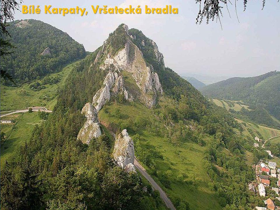 Bílé Karpaty, Vršatecká bradla
