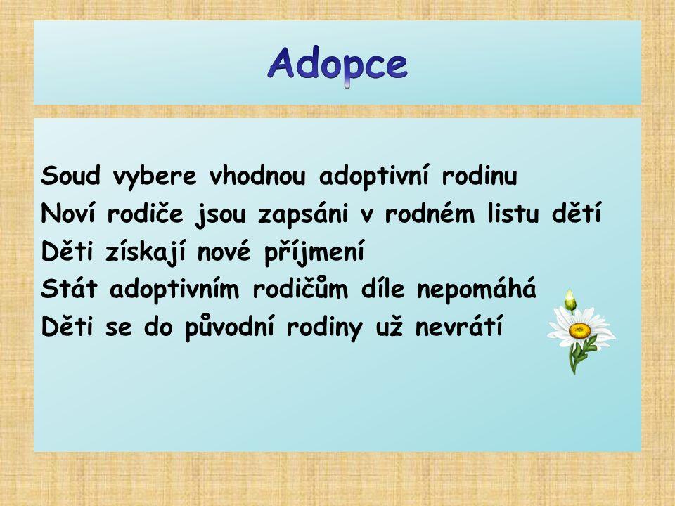 Adopce Soud vybere vhodnou adoptivní rodinu