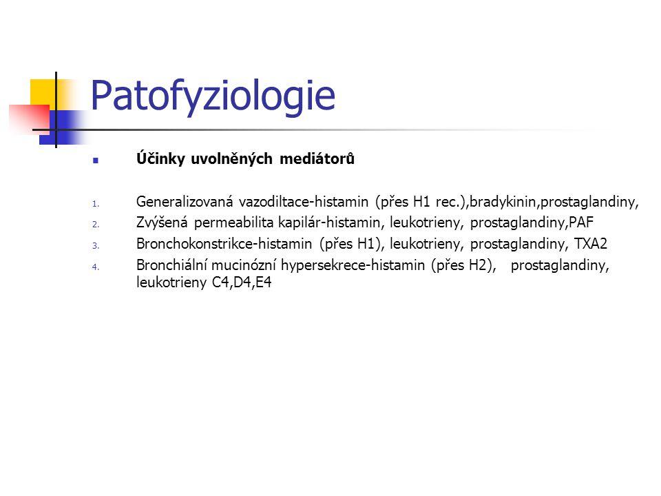 Patofyziologie Účinky uvolněných mediátorů