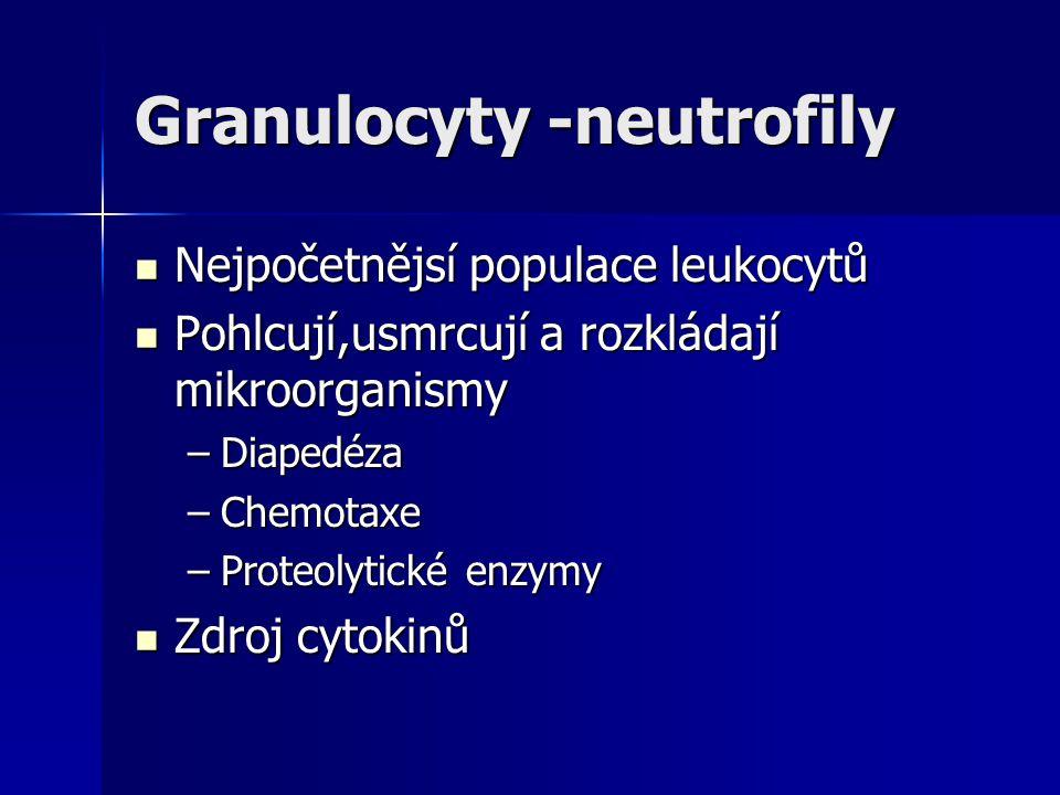 Granulocyty -neutrofily