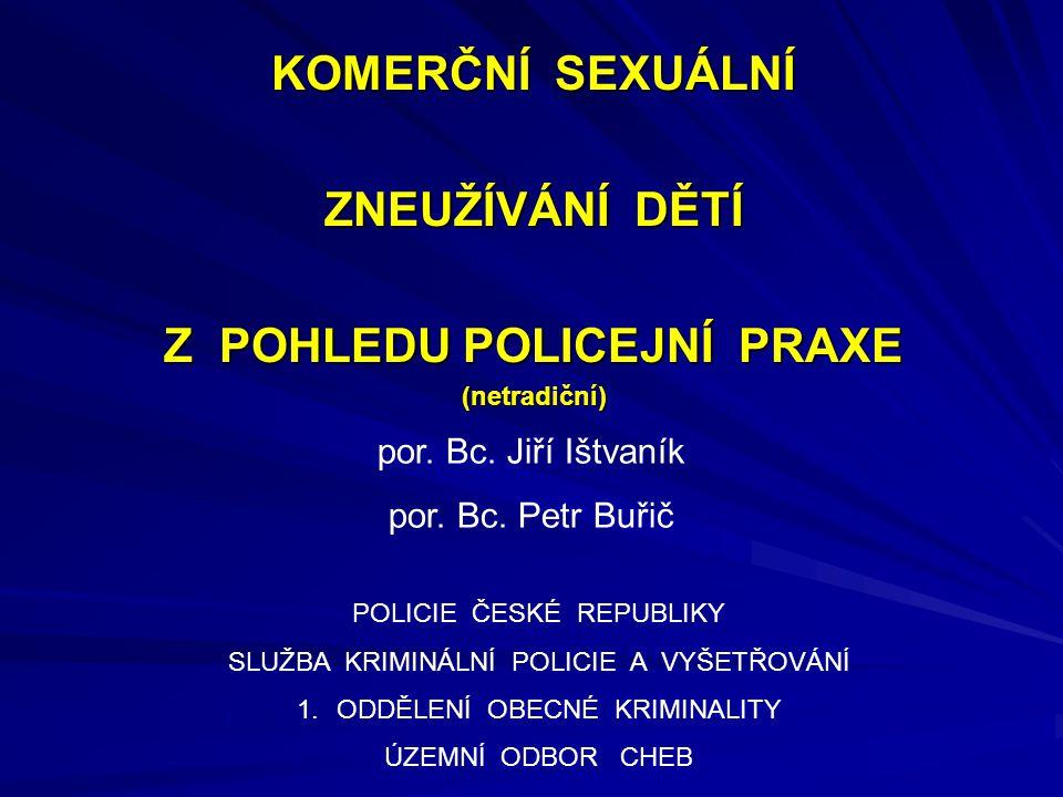 Z POHLEDU POLICEJNÍ PRAXE