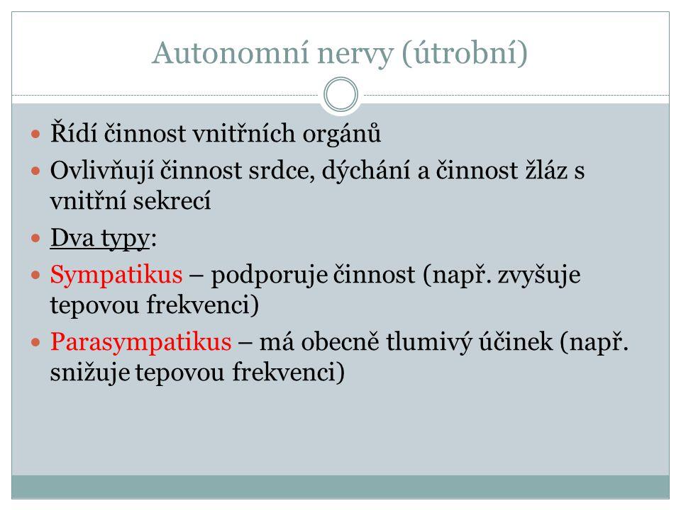 Autonomní nervy (útrobní)