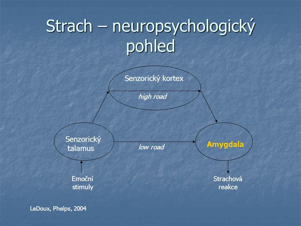 Strach – neuropsychologický pohled