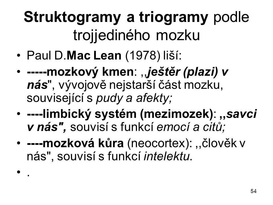 Struktogramy a triogramy podle trojjediného mozku