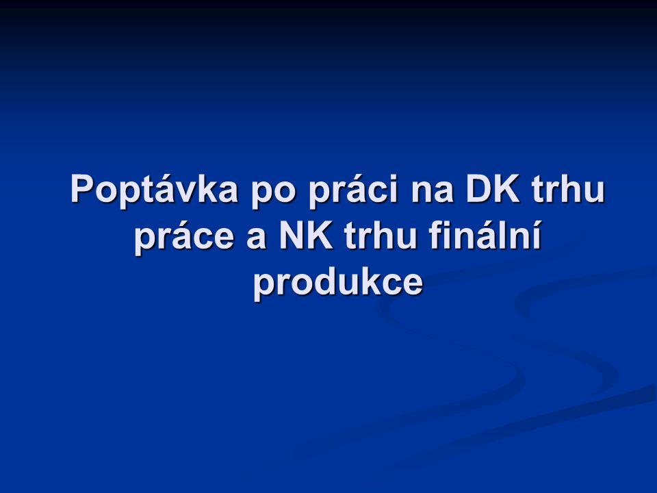 Poptávka po práci na DK trhu práce a NK trhu finální produkce